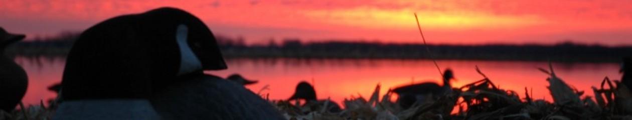 Nebraska Outfitters – Merriam's Turkey Hunts, Trophy Whitetail Deer, Waterfowl Hunts, Pheasant Hunts
